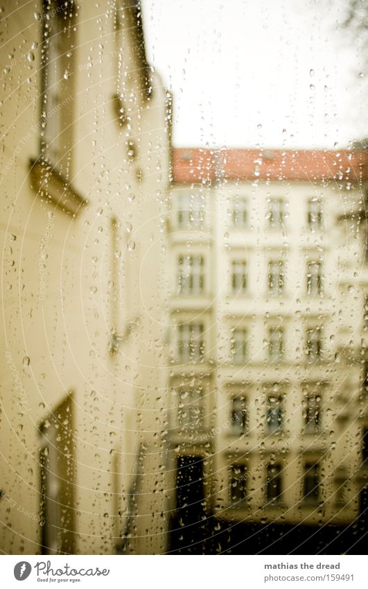 rainy day Window pane Slice Vantage point Rain Water Drops of water Weather Backyard House (Residential Structure) Facade Gloomy Gray Winter Sky Transience