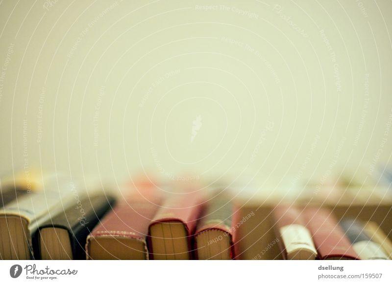 Bookworm, Bookworm Shelves Old Education Bookshelf Worm's-eye view Deserted Library Literature Reading matter