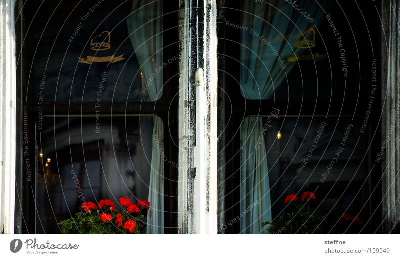 Flower Window Dark Emotions Sadness Living or residing Gloomy Italy Drape Curtain Venice