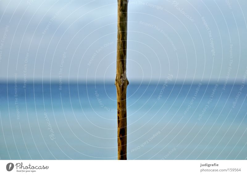 1000 Baltic Sea Ocean Lake Sky Clouds Water Horizon Branch Rod Stick Wood Division Divided Line Grid Colour Quarter