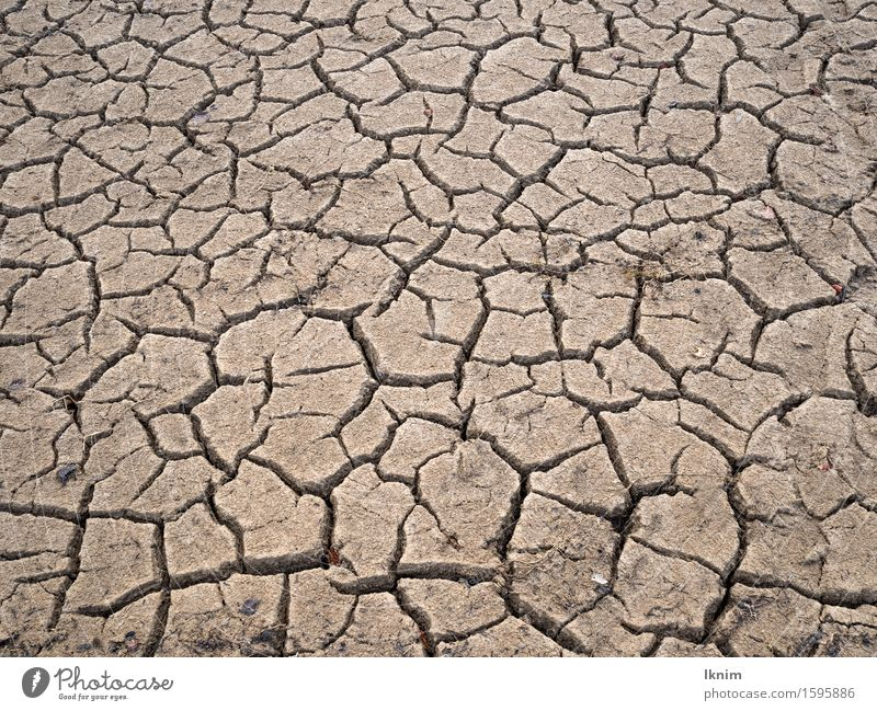 cracks in the soil, dried-up field Environment Earth Climate change Drought Dry Threat Crisis Nature Environmental pollution Environmental protection Decline