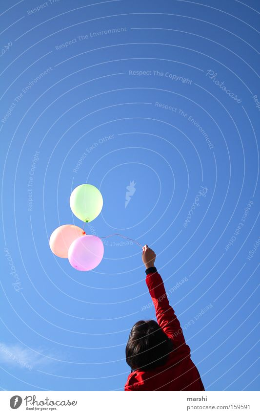Let them fly ... Balloon Sky Blue Freedom Release Air Birthday Joy Summer Woman Upward