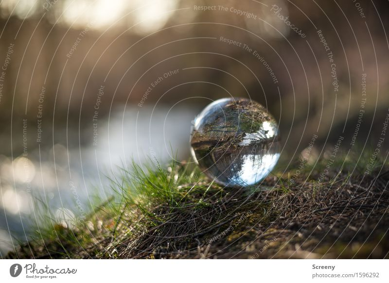 Close to the water... Nature Landscape Plant Earth Water Spring Grass Forest River bank Round Brown Green Serene Patient Calm Crystal ball Glass ball High Venn