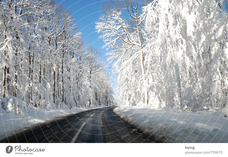 Winter Street Forest Snow Mountain Driving Traffic infrastructure Curve Smoothness Mud Alpine Country road Winter maintenance program