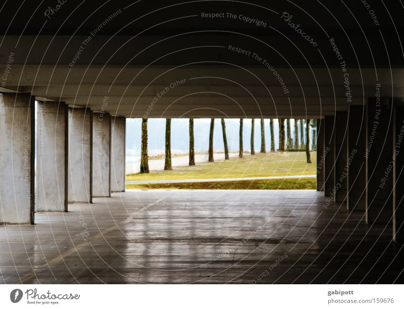 tunnel vision Subdued colour Exterior shot Deserted Tree Park River bank Rhine Ludwigshafen Places Parking garage Building Architecture Concrete Line Glittering