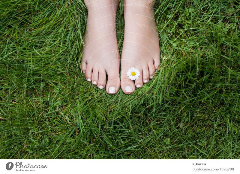 summertime Human being Feminine Feet 1 Nature Spring Summer Grass Blossom Garden Park Meadow Relaxation Dream Happiness Positive Green Joy Happy
