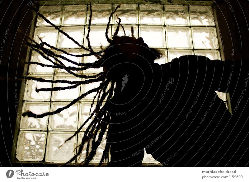 SHAKE YOUR HAIR FOR ME Silhouette Human being Man Hair and hairstyles Dreadlocks Swing Movement Action Window Back-light Shake Rotate Free Light heartedness