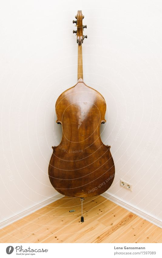 Double bass from behind Art Music Concert Musical instrument Wood Inspiration Performance Luxury School Colour photo Interior shot Deserted Copy Space left