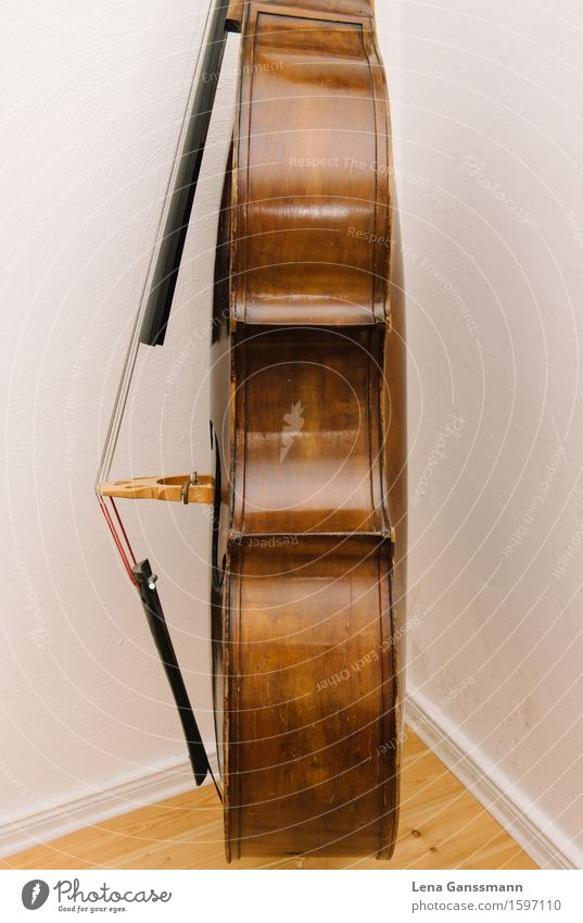 Double bass - side view Joy Night life Entertainment Music Concert Musician bass violin Musical instrument Brown Colour photo Deserted Flash photo