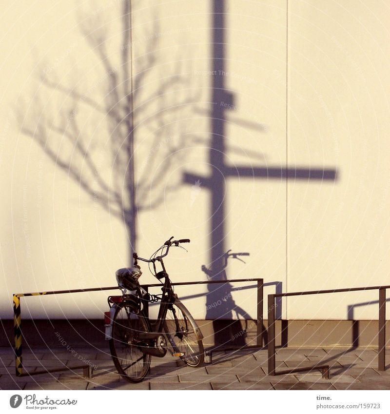 HB09.1 - Late shift Bicycle Tree Wall (barrier) Wall (building) Transport Lanes & trails Signs and labeling Stand Town Life Apocalyptic sentiment Inspiration