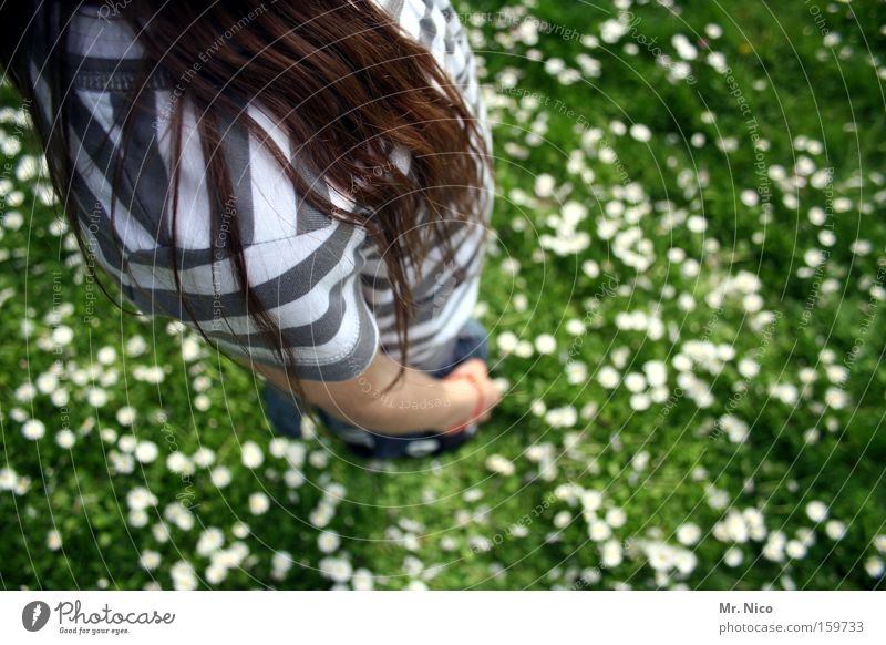 Child Youth (Young adults) Meadow Playing Hair and hairstyles Large Posture Bird's-eye view Stripe Shoulder Flower meadow Striped Unwavering Anatomy