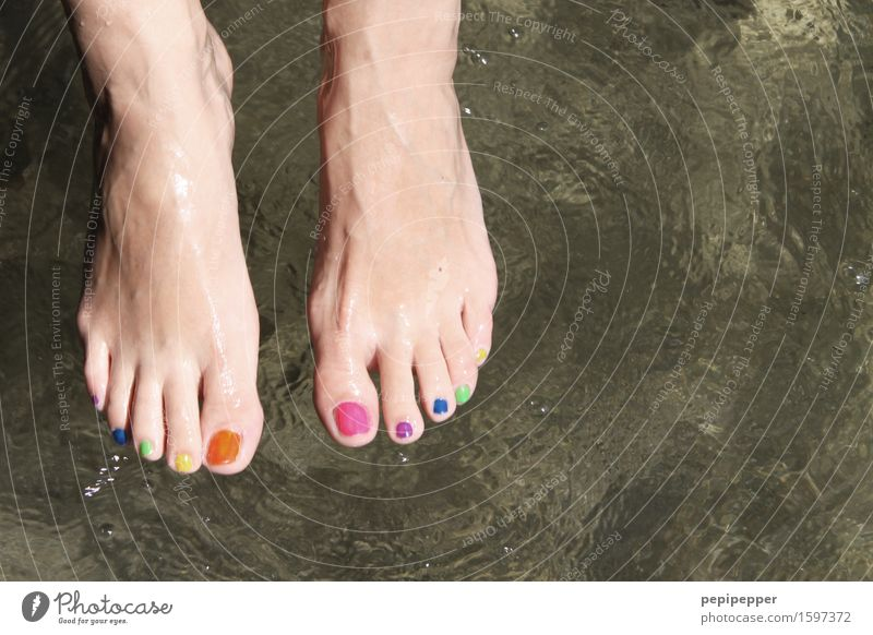 coloured fabrics Beautiful Personal hygiene Pedicure Cosmetics Nail polish Wellness Well-being Swimming & Bathing Feminine Feet 1 Human being Water Summer