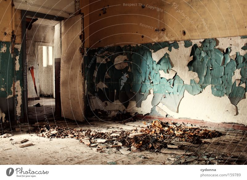 Old Leaf Colour Life Room Time Transience Derelict Decline Destruction Memory Location Vacancy Military building Doorframe