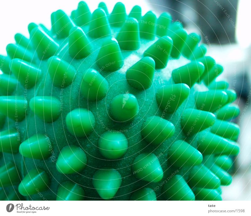 rubber studs Rubber Burl Green Things Close-up massage ball