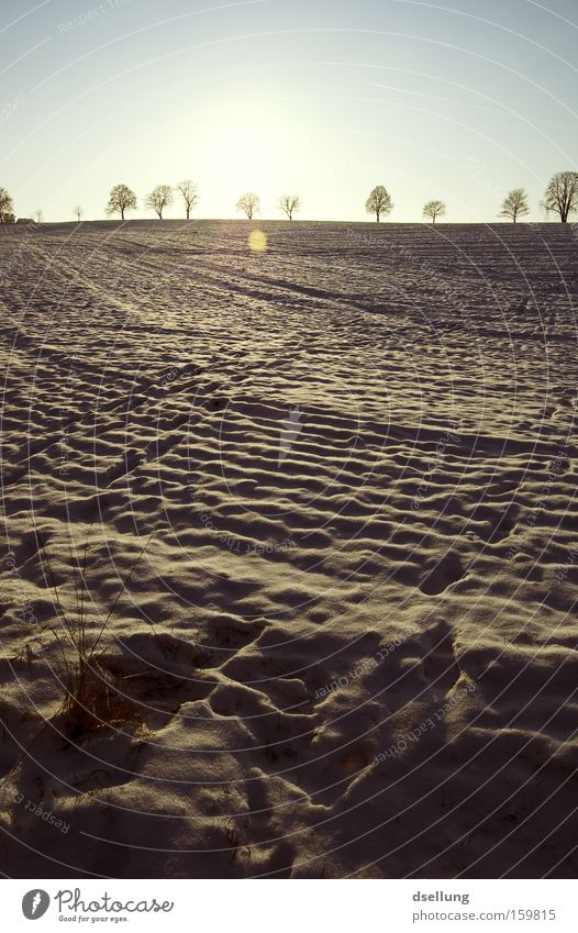 Tracks in the snow Winter Snow Sunset Horizon Grass Field Footprint Cold parked in the parking lot