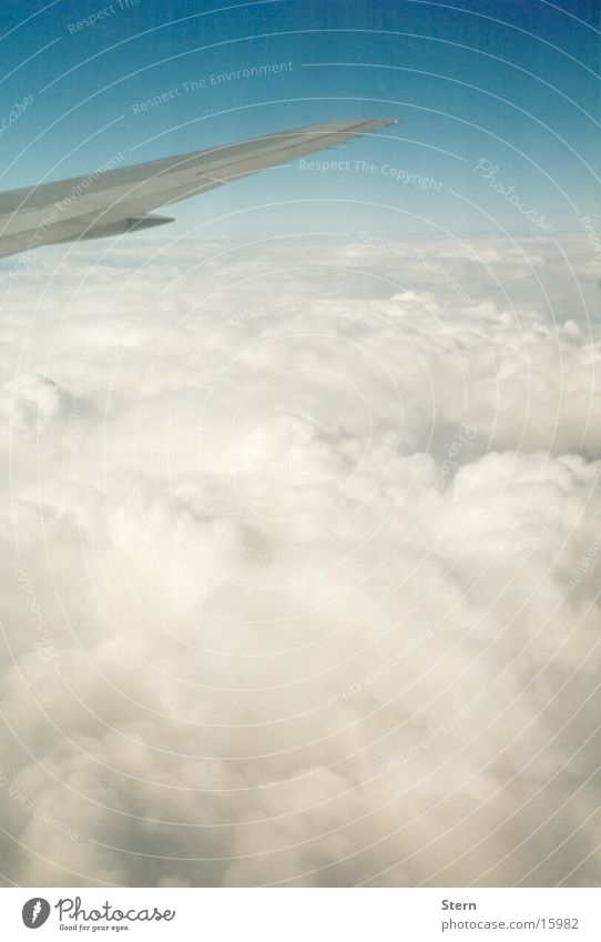 Sky Blue Clouds Airplane Flying Horizon Level Wing Cotton candy