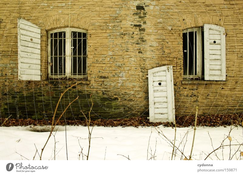 Old Winter Life Snow Wall (building) Window Wall (barrier) Time Transience Derelict Decline Destruction Memory Vacancy Shutter Army