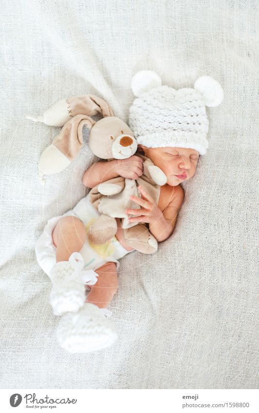 snuggle Masculine Baby Infancy 1 Human being 0 - 12 months Cap Cuddly Small White Cuddling Sleep Cuddly toy Colour photo Interior shot Neutral Background Day