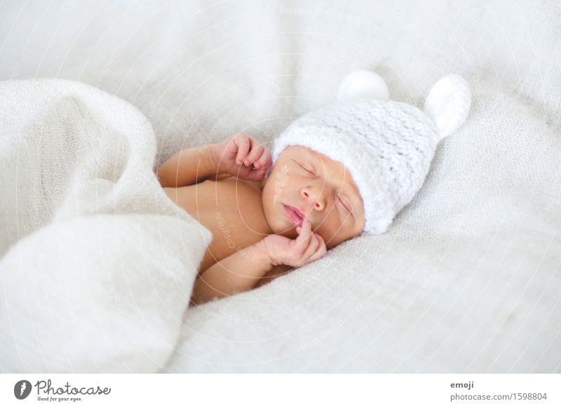 Newborn Bed Baby Infancy 1 Human being 0 - 12 months Cap Cuddly Small Sleep Dream Colour photo Interior shot Neutral Background Day Shallow depth of field