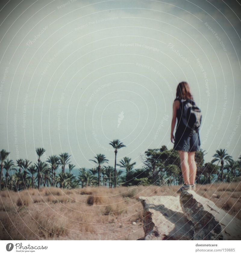 Woman Human being Nature Youth (Young adults) Sky Plant Summer Vacation & Travel Feminine Stone Adults Hiking Adventure Vantage point Desert Longing