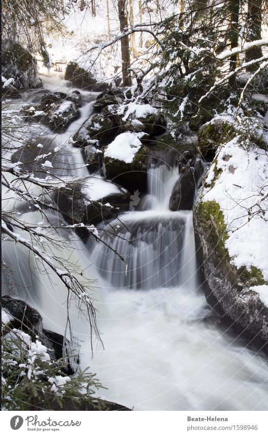 Nature Water Landscape Winter Dark Cold Environment Snow Stone Tourism Ice Power Esthetic Trip Adventure Elements