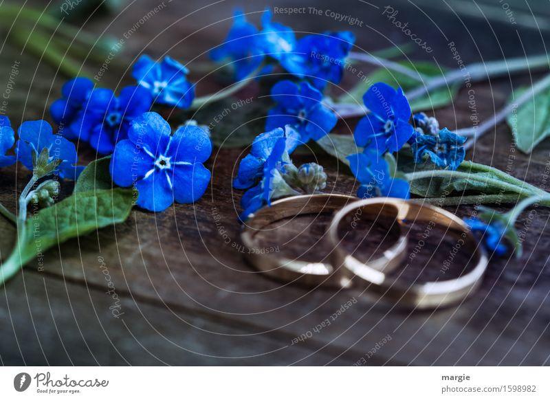 Plant Blue Flower Feasts & Celebrations Gold Wedding