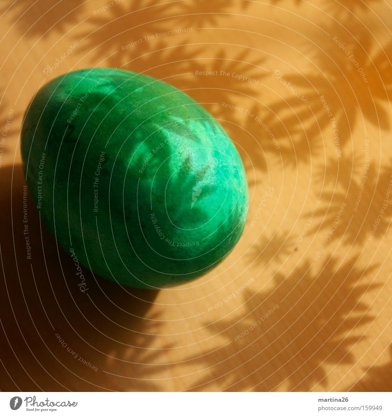 Easter egg Colour photo Interior shot Close-up Pattern Deserted Shadow Food Spring Flower Blossom Wood Friendliness Kitsch Brown Green Contentment Calm Serene