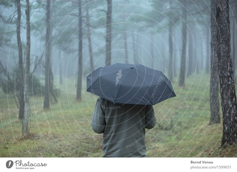 Standing in the rain Human being Back 1 Environment Nature Plant Autumn Climate Fog Tree Grass Forest Breathe Relaxation Umbrellas & Shades Dark Funeral Gray