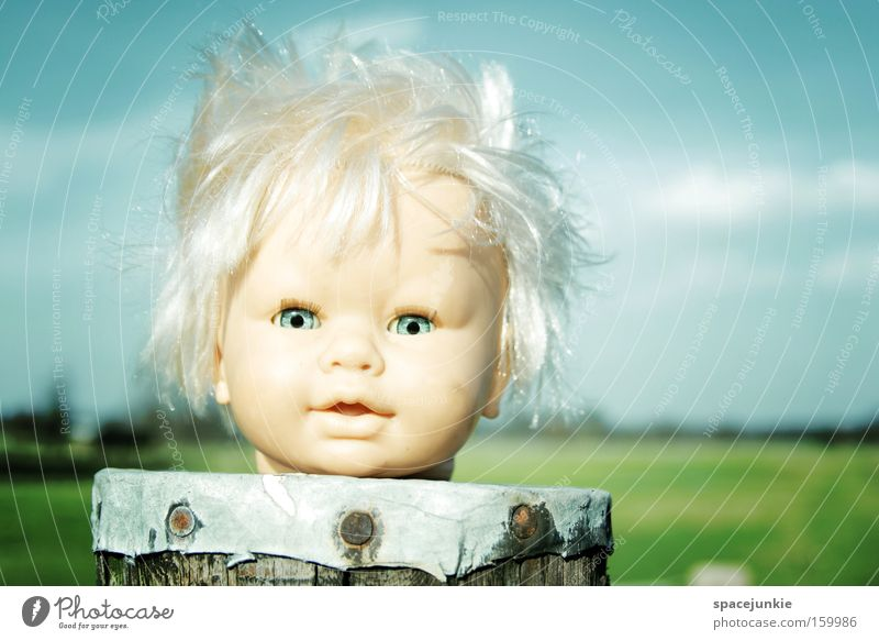 Sky Joy Clouds Loneliness Hair and hairstyles Head Landscape Wind Gale Doll Whimsical Electricity pylon Pole Headless