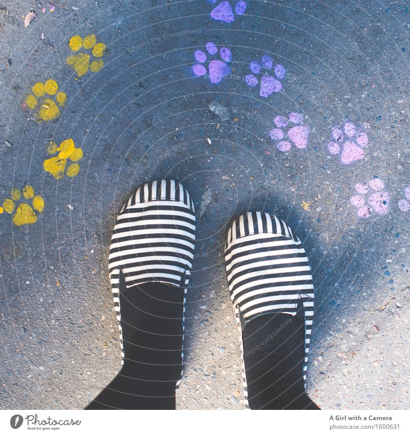 Paw Prints and stripy Feet 1 Human being Stand Friendliness Multicoloured Footprint Yellow Pink Dog Cat Stripe Crazy Colour photo Exterior shot Detail