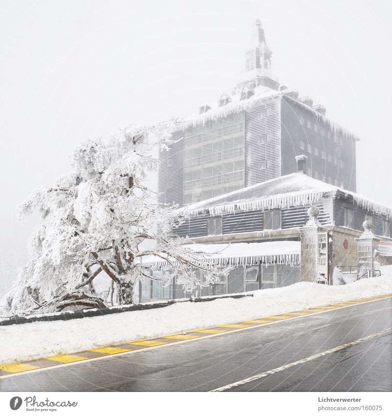 Tree Winter House (Residential Structure) Cold Snow Ice Building Frozen Spain Pass