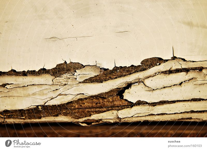 Old Colour Time Transience Derelict Decline Crack & Rip & Tear Destruction Varnish Flake off Contract Brittle