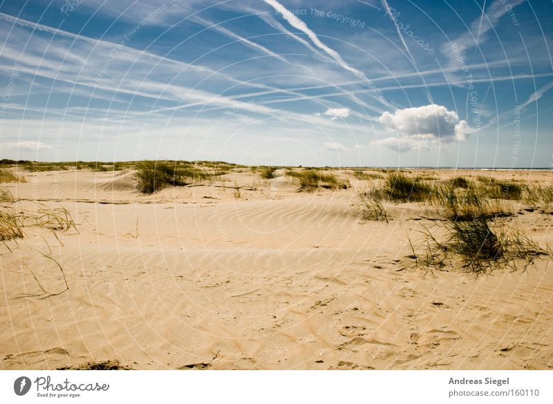 Sky Ocean Summer Beach Vacation & Travel Clouds Relaxation Sand Coast Beach dune North Sea Denmark Vapor trail