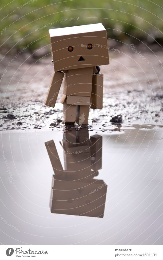 What do u see? Reflection Robot Water Body of water Puddle Cardboard little man Figure Piece Eyes Face Nature Natural danboo danboard Small Miniature Discover