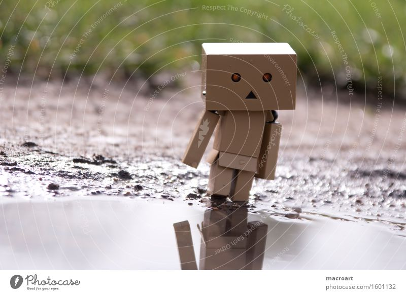 Mirror, mirror.... Reflection Robot Water Body of water Puddle Cardboard Masculine Figure Piece Eyes Face Nature Natural danboo danboard Small Miniature