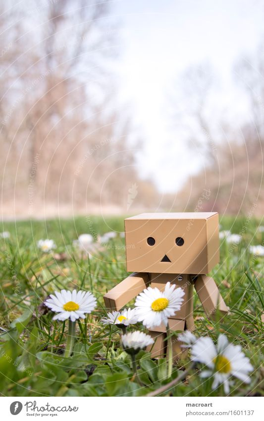 summer Summer Sun Meadow danboard Robot Small Man Body Figure Life To enjoy Things Daisy Face Plant Lawn Nature Natural To go for a walk Calm
