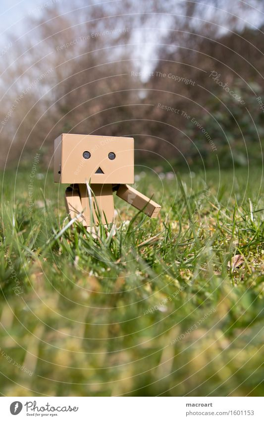 Small robot on the meadow Summer Sun Meadow danboard Robot Masculine Figure Life To enjoy Things Daisy Face Plant Lawn Nature Natural To go for a walk Calm