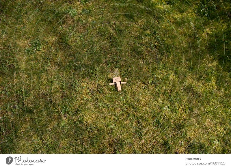 vastness Far-off places Summer Doomed Lie Sun Meadow danboard Robot Small little man Figure Life To enjoy Things Daisy Face Plant Lawn Nature Natural