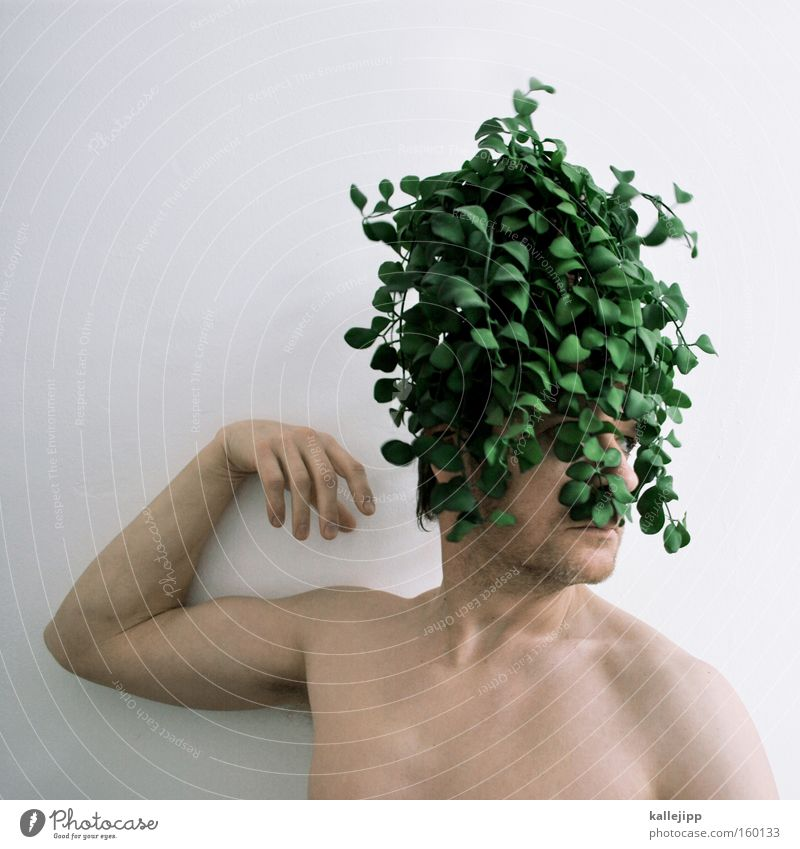 Human being Nature Green Plant Environment Hair and hairstyles Crazy Environmental protection Sustainability Baroque Wig Climate protection Forest-dweller
