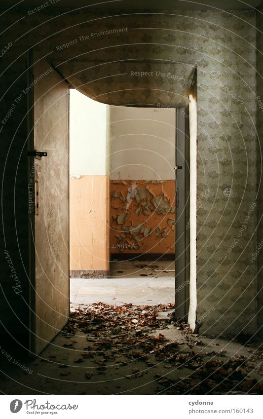 [Weimar09] Open doors Room Location Decline Vacancy Light Transience Time Life Memory Destruction Old Military building Entrance Leaf Autumn Door Derelict