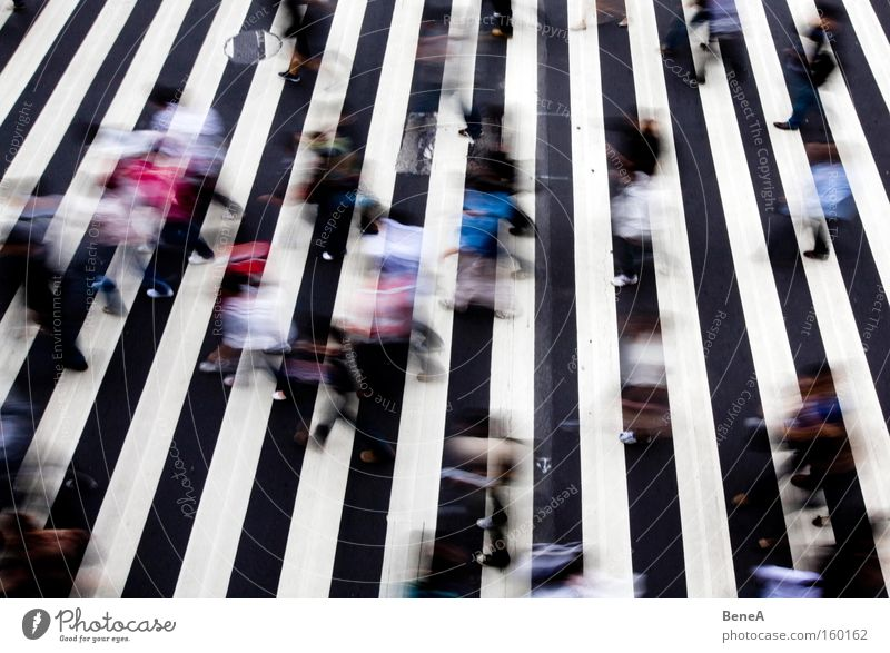 rush hour Work and employment Human being Group Crowd of people Town Traffic infrastructure Rush hour Pedestrian Street Crossroads Road junction Movement Stress