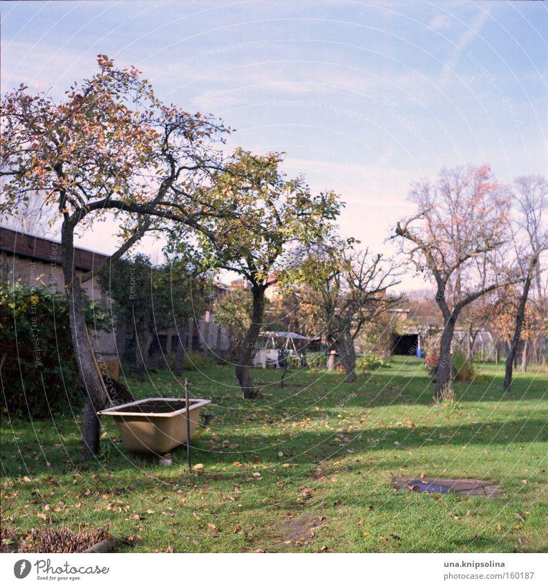 Blue Green Tree Relaxation Grass Garden Leisure and hobbies Bathtub Bathroom Swimming pool Garden plot Gardener Room