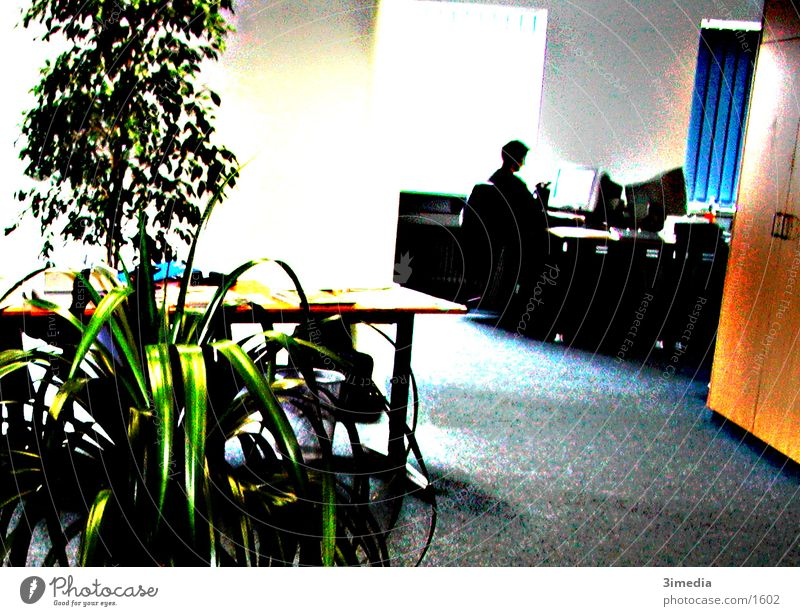Colour Office Photographic technology