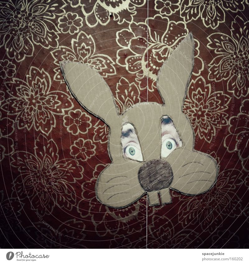 The Easter Fratze Easter Bunny Hare & Rabbit & Bunny Mask Eyes Wallpaper Dress up Carnival costume Humor Funny Whimsical Joy