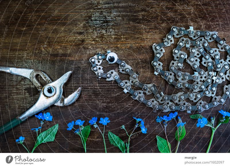 Actually I like you! A pair of pliers and a chainsaw with eyes and forget-me-not - flowers on a wooden background Work and employment Profession Gardening