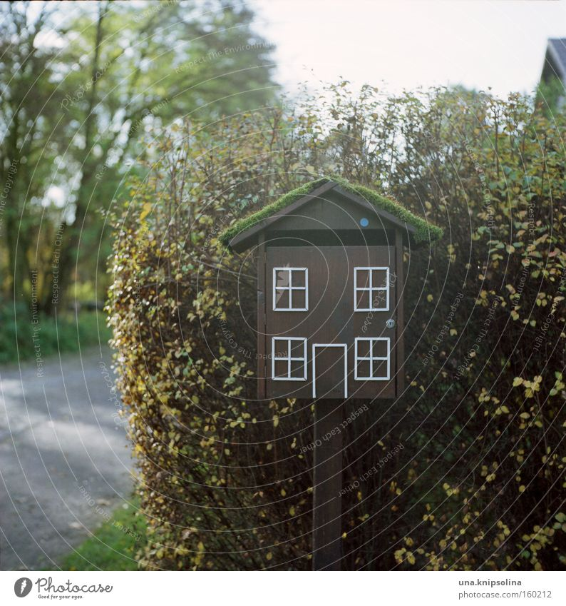 House (Residential Structure) Window Bird Door Living or residing Write Whimsical Obscure Mailbox Neighbor Postman