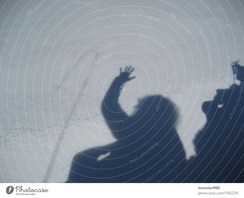 snow shadow Switzerland Sleigh Beautiful Shadow Winter Joy Salutation Whip Snow