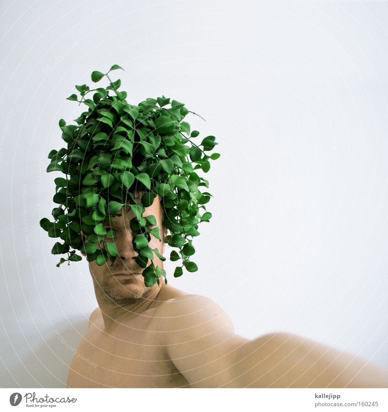 Human being Man Green Plant Hair and hairstyles Curl Hairdresser Organic produce Ecological Barber shop Portrait photograph Organic farming Agriculture Style