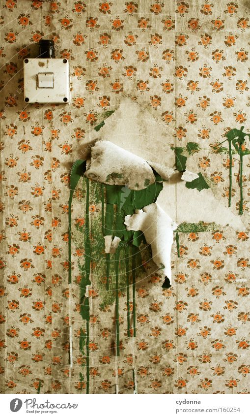 Old Colour Life Wall (building) Room Time Retro Decoration Transience Wallpaper Derelict Decline Switch Destruction Memory Location