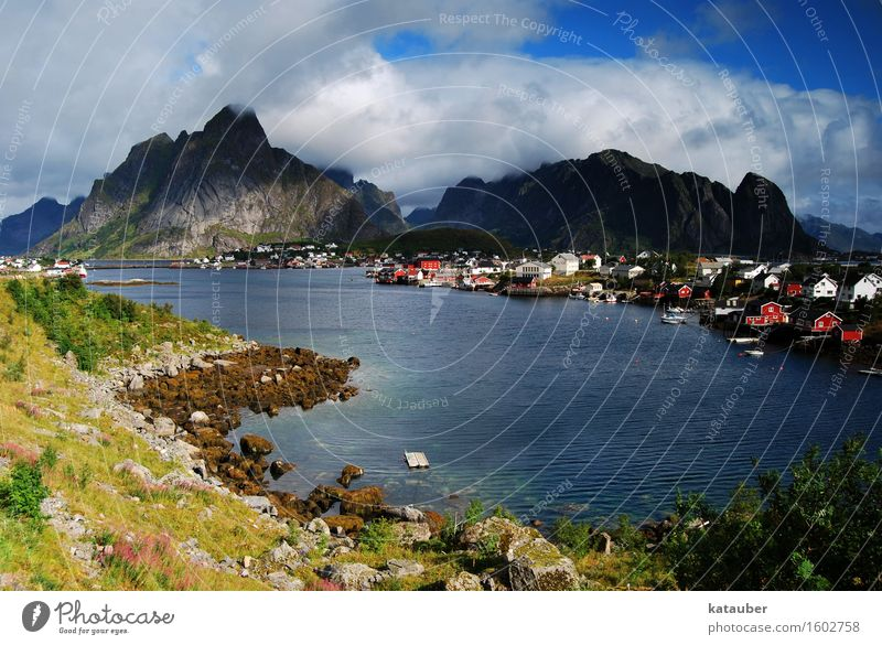 the fishing village pure Landscape Mountain Fjord Point Fish Ocean Blue sky Clouds Sun Hut Watercraft Lofotes Island Norway Summer Light Contrast Coast